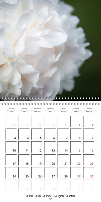 Soft White Flowers (Wall Calendar 2019 300 × 300 mm Square) - Produktdetailbild 6