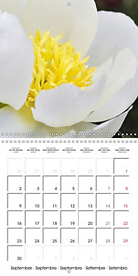 Soft White Flowers (Wall Calendar 2019 300 × 300 mm Square) - Produktdetailbild 9