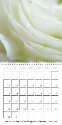 Soft White Flowers (Wall Calendar 2019 300 × 300 mm Square) - Produktdetailbild 12