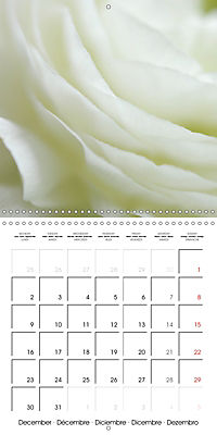Soft White Flowers (Wall Calendar 2019 300 × 300 mm Square) - Produktdetailbild 12