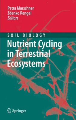 Soil Biology: Nutrient Cycling in Terrestrial Ecosystems