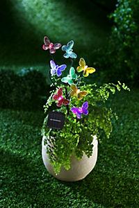 "Solar-Gartendeko ""Mariposa"" - Produktdetailbild 1"