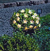 "Solar-Lichterkette ""Blume"" - Produktdetailbild 1"
