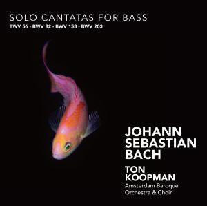 Solo Cantatas For Bass, Ton & The Amsterdam Baroque Orchestra Koopman