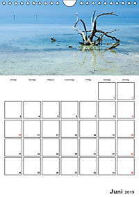 Sommer, Sonne, Freizeit / Terminplaner (Wandkalender 2019 DIN A4 hoch) - Produktdetailbild 6