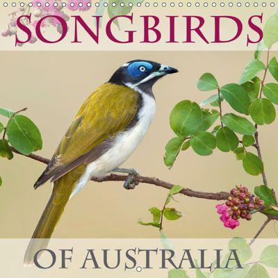 Songbirds of Australia (Wall Calendar 2019 300 × 300 mm Square), BIA birdimagency