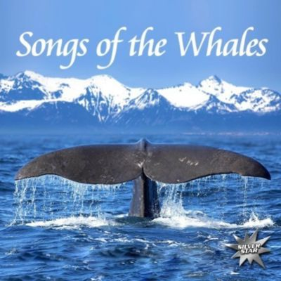 Songs Of The Whales, 1 Audio-CD, Nature Project