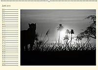 Sonne und Mond - faszinierend und anziehend (Wandkalender 2019 DIN A2 quer) - Produktdetailbild 6