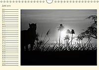 Sonne und Mond - faszinierend und anziehend (Wandkalender 2019 DIN A4 quer) - Produktdetailbild 6