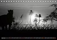 Sonne und Mond - faszinierend und anziehend (Tischkalender 2019 DIN A5 quer) - Produktdetailbild 6