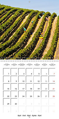 South Africa - Holiday paradise (Wall Calendar 2019 300 × 300 mm Square) - Produktdetailbild 4