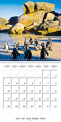 South Africa - Holiday paradise (Wall Calendar 2019 300 × 300 mm Square) - Produktdetailbild 6