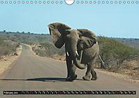 South Africa / UK-Version (Wall Calendar 2019 DIN A4 Landscape) - Produktdetailbild 2