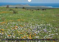 South Africa / UK-Version (Wall Calendar 2019 DIN A4 Landscape) - Produktdetailbild 12