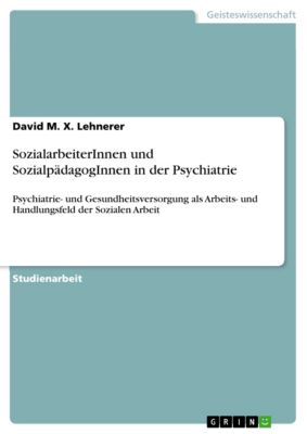 SozialarbeiterInnen und SozialpädagogInnen in der Psychiatrie, David M. X. Lehnerer