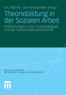 Soziale Arbeit in Theorie und Wissenschaft: Theoriebildung in der Sozialen Arbeit