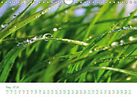 Spa for the Soul (Wall Calendar 2019 DIN A4 Landscape) - Produktdetailbild 5
