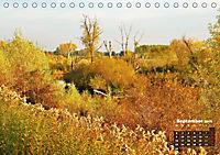 Spaziergang an der Donau (Tischkalender 2019 DIN A5 quer) - Produktdetailbild 9