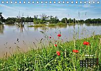 Spaziergang an der Donau (Tischkalender 2019 DIN A5 quer) - Produktdetailbild 5
