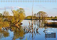 Spaziergang an der Donau (Tischkalender 2019 DIN A5 quer) - Produktdetailbild 3