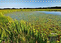 Spaziergang an der Donau (Tischkalender 2019 DIN A5 quer) - Produktdetailbild 6