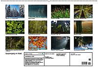 Spaziergang im Wald (Wandkalender 2019 DIN A2 quer) - Produktdetailbild 13