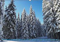 Spaziergang im Wald (Wandkalender 2019 DIN A2 quer) - Produktdetailbild 1