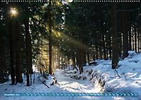 Spaziergang im Wald (Wandkalender 2019 DIN A2 quer) - Produktdetailbild 12