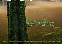 Spaziergang im Wald (Wandkalender 2019 DIN A2 quer) - Produktdetailbild 8