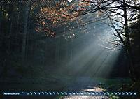 Spaziergang im Wald (Wandkalender 2019 DIN A2 quer) - Produktdetailbild 11