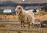 Spectacular beauty - Faroe Islands (Wall Calendar 2019 DIN A3 Landscape) - Produktdetailbild 4