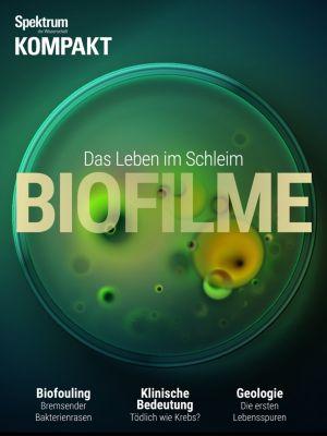 Spektrum Kompakt: Spektrum Kompakt - Biofilme, Spektrum der Wissenschaft