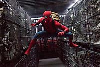 Spider-Man: Homecoming - Produktdetailbild 1