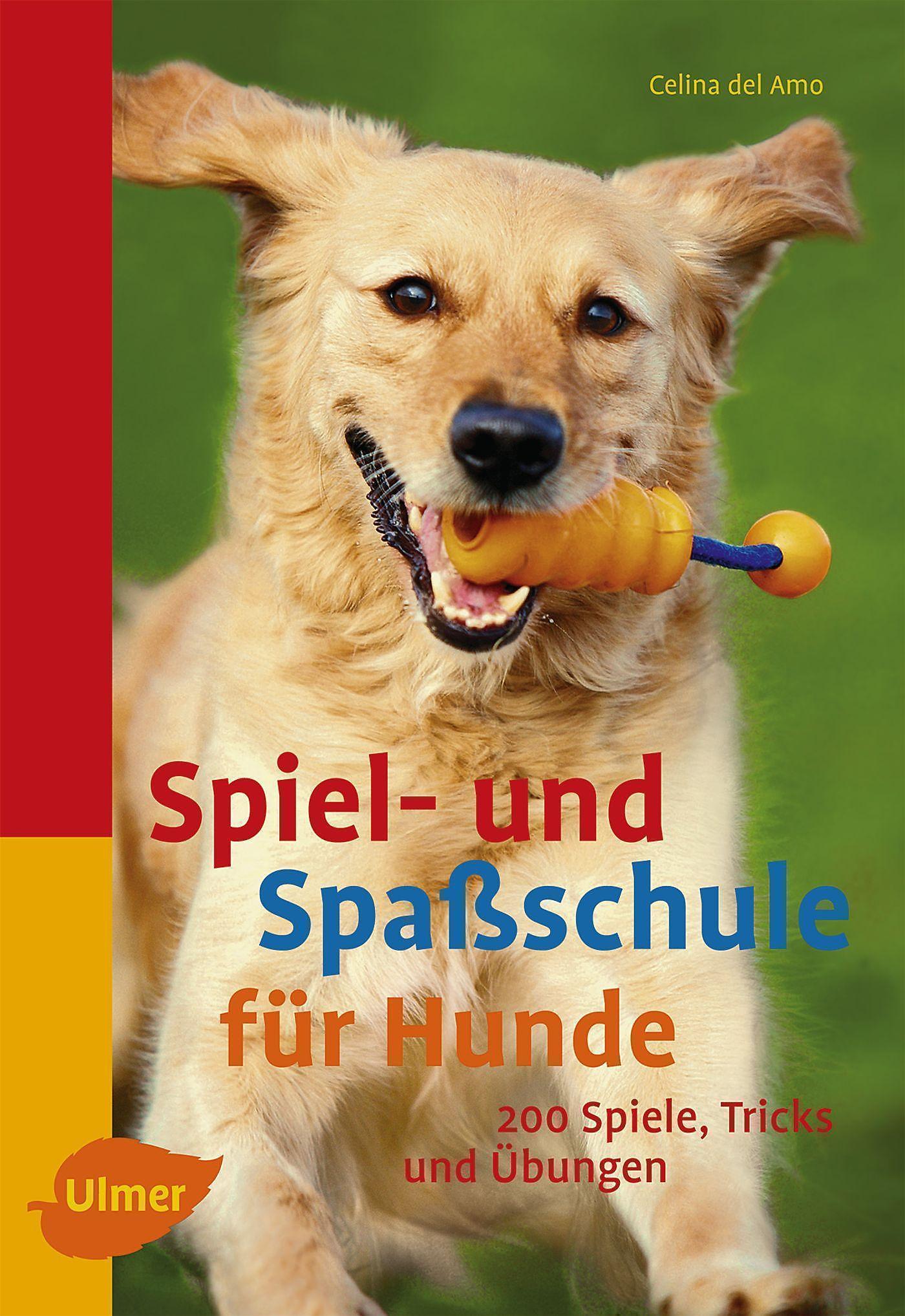 Spiel Hunde
