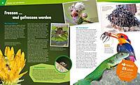 Spinnen - Produktdetailbild 4