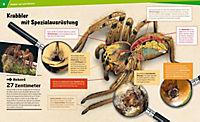 Spinnen - Produktdetailbild 3