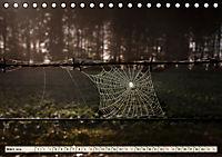 Spinnennetze - Wunder der Natur (Tischkalender 2019 DIN A5 quer) - Produktdetailbild 3