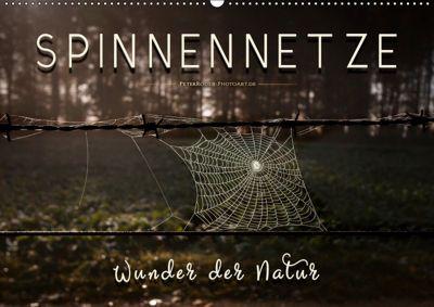 Spinnennetze - Wunder der Natur (Wandkalender 2019 DIN A2 quer), Peter Roder