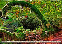Spinnennetze - Wunder der Natur (Wandkalender 2019 DIN A2 quer) - Produktdetailbild 8
