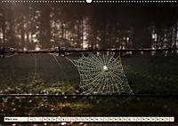 Spinnennetze - Wunder der Natur (Wandkalender 2019 DIN A2 quer) - Produktdetailbild 3