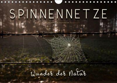 Spinnennetze - Wunder der Natur (Wandkalender 2019 DIN A4 quer), Peter Roder