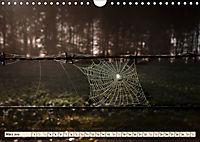 Spinnennetze - Wunder der Natur (Wandkalender 2019 DIN A4 quer) - Produktdetailbild 3