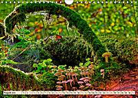 Spinnennetze - Wunder der Natur (Wandkalender 2019 DIN A4 quer) - Produktdetailbild 8