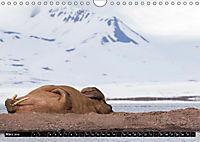 Spitzbergen - Arktische Impressionen (Wandkalender 2019 DIN A4 quer) - Produktdetailbild 7