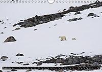 Spitzbergen - Arktische Impressionen (Wandkalender 2019 DIN A4 quer) - Produktdetailbild 8