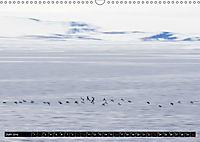 Spitzbergen - Arktische Impressionen (Wandkalender 2019 DIN A3 quer) - Produktdetailbild 6