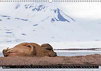Spitzbergen - Arktische Impressionen (Wandkalender 2019 DIN A3 quer) - Produktdetailbild 3