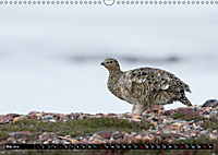 Spitzbergen - Arktische Impressionen (Wandkalender 2019 DIN A3 quer) - Produktdetailbild 5