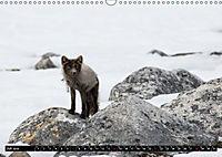 Spitzbergen - Arktische Impressionen (Wandkalender 2019 DIN A3 quer) - Produktdetailbild 7