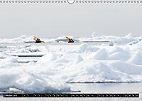 Spitzbergen - Arktische Impressionen (Wandkalender 2019 DIN A3 quer) - Produktdetailbild 10